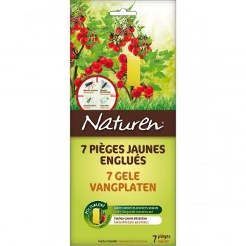 Anti puceron mouche moucheron biologique pi ge englu - Produit anti moucheron ...